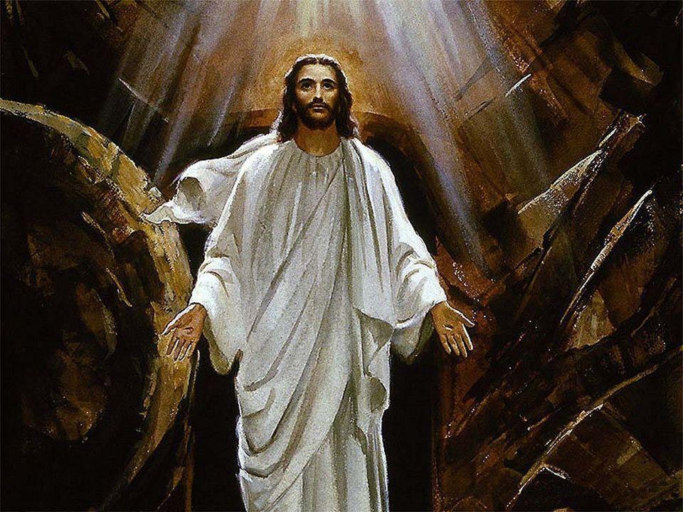 Rallegratevi ed esultate, perché grande è la vostra ricompensa nei cieli. Così infatti hanno perseguitato i profeti prima di voi.