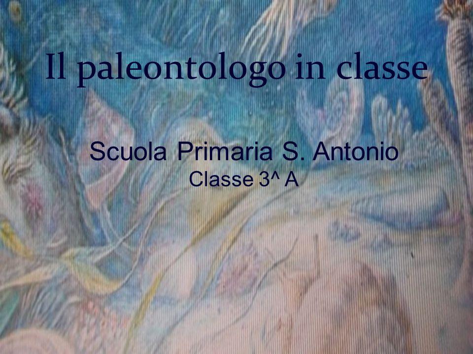 Il paleontologo in classe Scuola Primaria S. Antonio Classe 3^ A