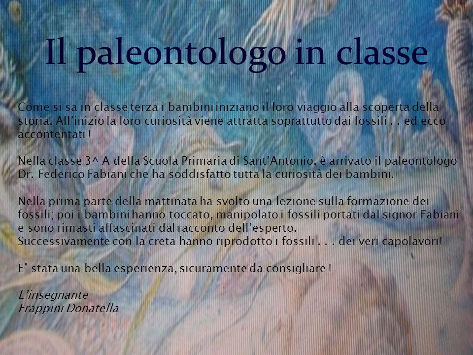 Il paleontologo in classe Come si sa in classe terza i bambini iniziano il loro viaggio alla scoperta della storia. Allinizio la loro curiosità viene