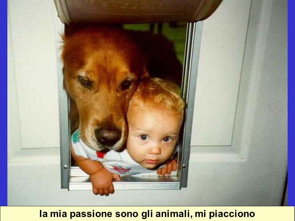 la mia passione sono gli animali, mi piacciono