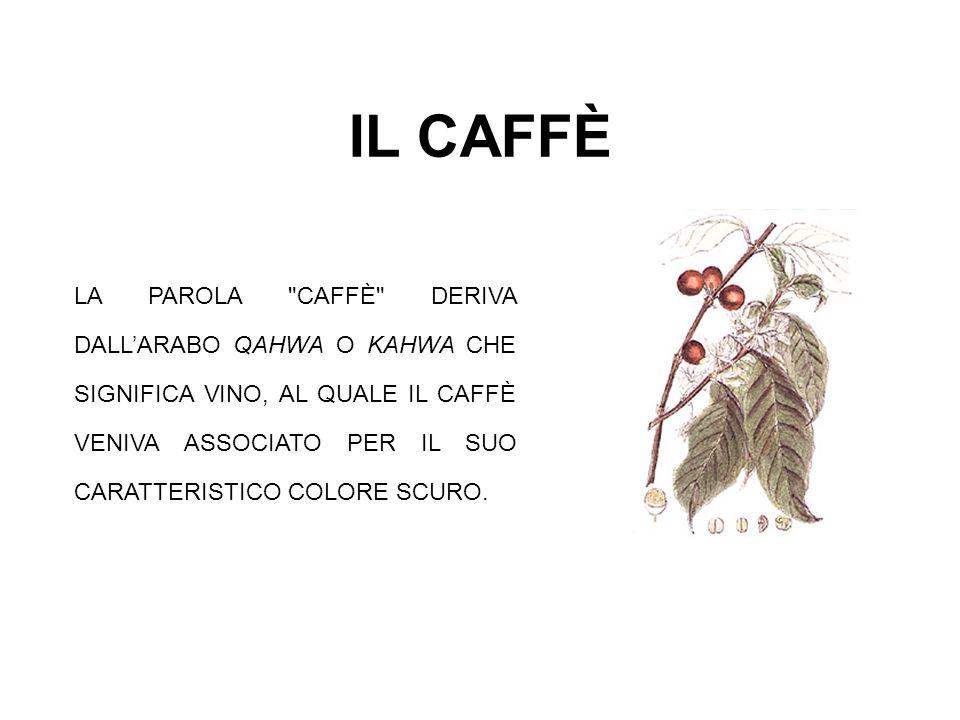STORIA DEL CAFFÈ IL CAFFÈ CRESCEVA ORIGINARIAMENTE ALLO STATO SELVATICO IN ABISSINIA E ARABIA; PRIMA DEL X SECOLO VENIVA MANGIATO COSÌ COM ERA DALLE TRIBÙ NOMADI DI QUESTE ZONE CHE AVEVANO SCOPERTO LE SUE PROPRIETÀ STIMOLANTI.
