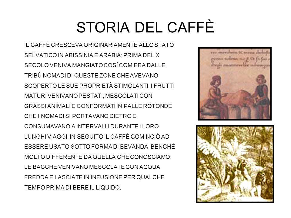 STORIA DEL CAFFÈ IL CAFFÈ CRESCEVA ORIGINARIAMENTE ALLO STATO SELVATICO IN ABISSINIA E ARABIA; PRIMA DEL X SECOLO VENIVA MANGIATO COSÌ COM'ERA DALLE T