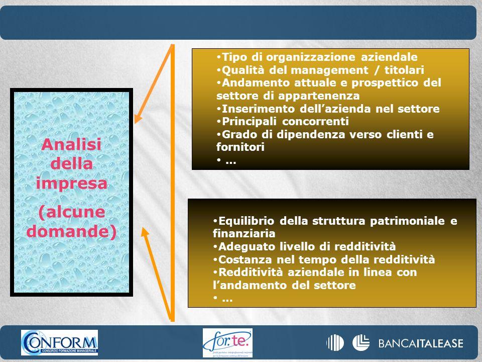 Analisi della impresa (alcune domande) Tipo di organizzazione aziendale Qualità del management / titolari Andamento attuale e prospettico del settore