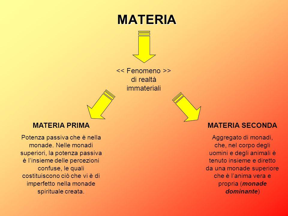 MATERIA > di realtà immateriali MATERIA PRIMA Potenza passiva che è nella monade. Nelle monadi superiori, la potenza passiva è linsieme delle percezio