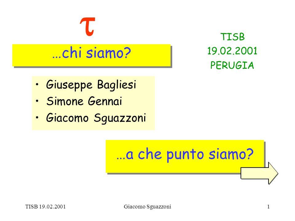 TISB 19.02.2001Giacomo Sguazzoni1 …a che punto siamo.