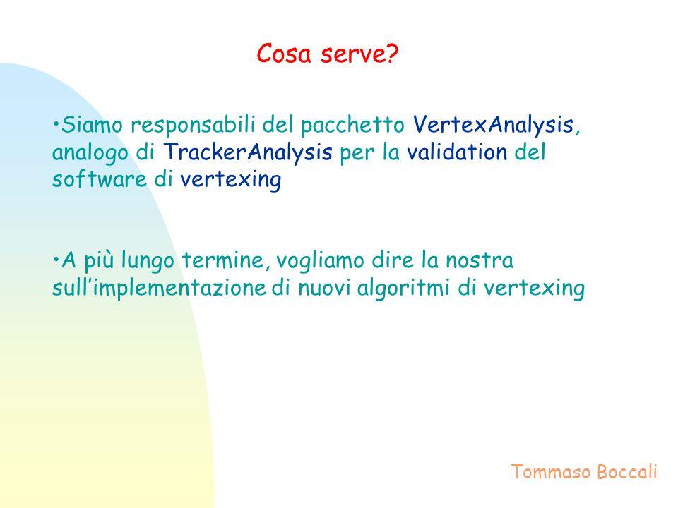 Cosa serve? Siamo responsabili del pacchetto VertexAnalysis, analogo di TrackerAnalysis per la validation del software di vertexing A più lungo termin
