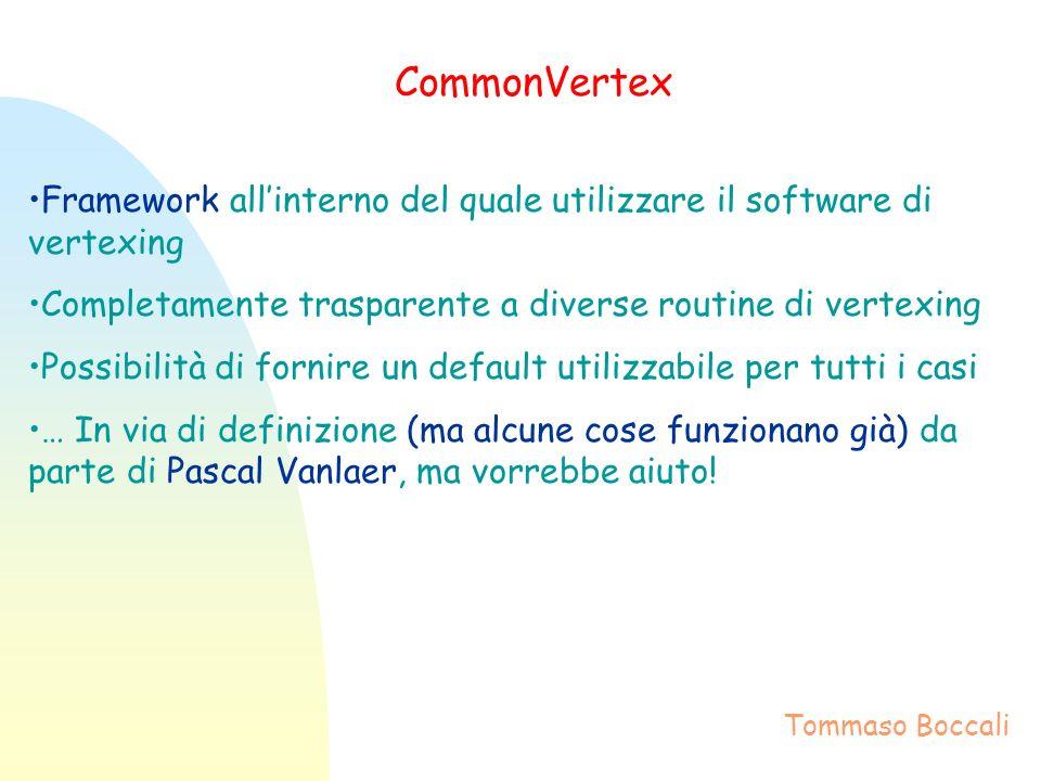 CommonVertex Framework allinterno del quale utilizzare il software di vertexing Completamente trasparente a diverse routine di vertexing Possibilità di fornire un default utilizzabile per tutti i casi … In via di definizione (ma alcune cose funzionano già) da parte di Pascal Vanlaer, ma vorrebbe aiuto.