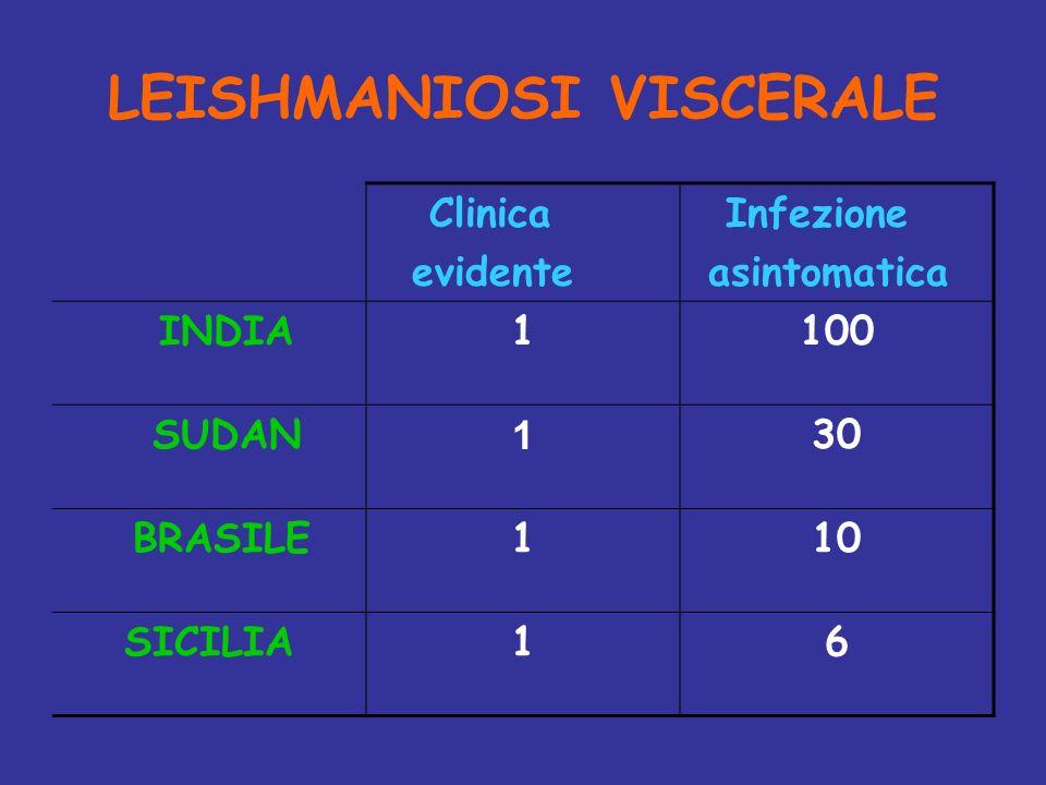 LEISHMANIOSI VISCERALE Clinica evidente Infezione asintomatica INDIA1100 SUDAN 1 30 BRASILE110 SICILIA16