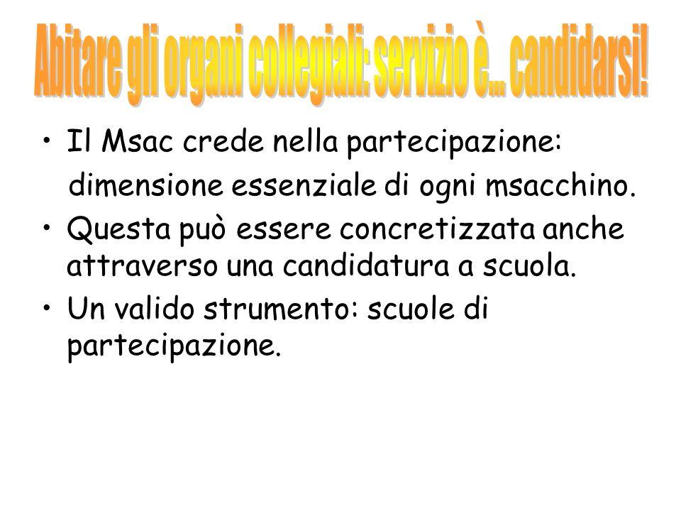 Il Msac crede nella partecipazione: dimensione essenziale di ogni msacchino.