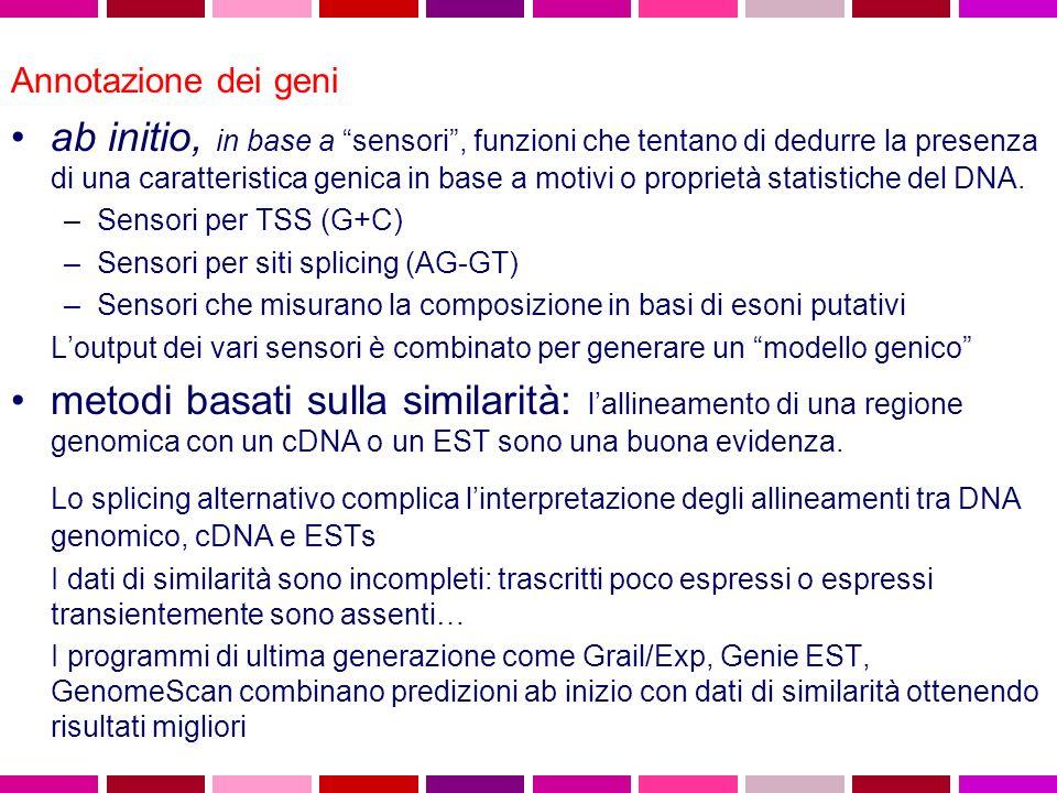 Annotazione dei geni ab initio, in base a sensori, funzioni che tentano di dedurre la presenza di una caratteristica genica in base a motivi o proprie