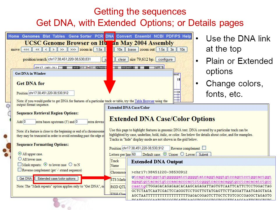 Getting the sequences Get DNA, with Extended Options; or Details pages Use the DNA link at the top Plain or Extended options Change colors, fonts, etc.