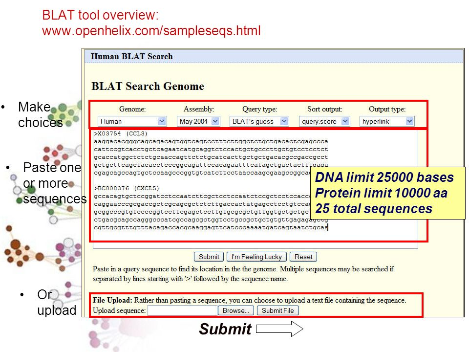BLAT tool overview: www.openhelix.com/sampleseqs.html Submit Make choices DNA limit 25000 bases Protein limit 10000 aa 25 total sequences Paste one or more sequences Or upload