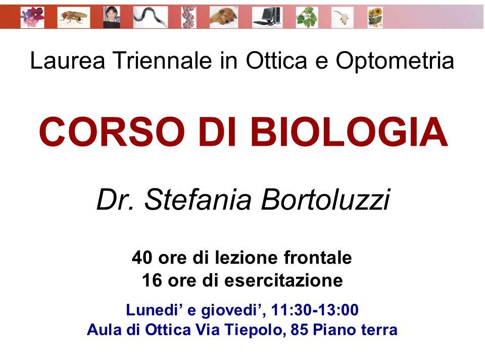 Laurea Triennale in Ottica e Optometria CORSO DI BIOLOGIA Dr. Stefania Bortoluzzi 40 ore di lezione frontale 16 ore di esercitazione Lunedi e giovedi,