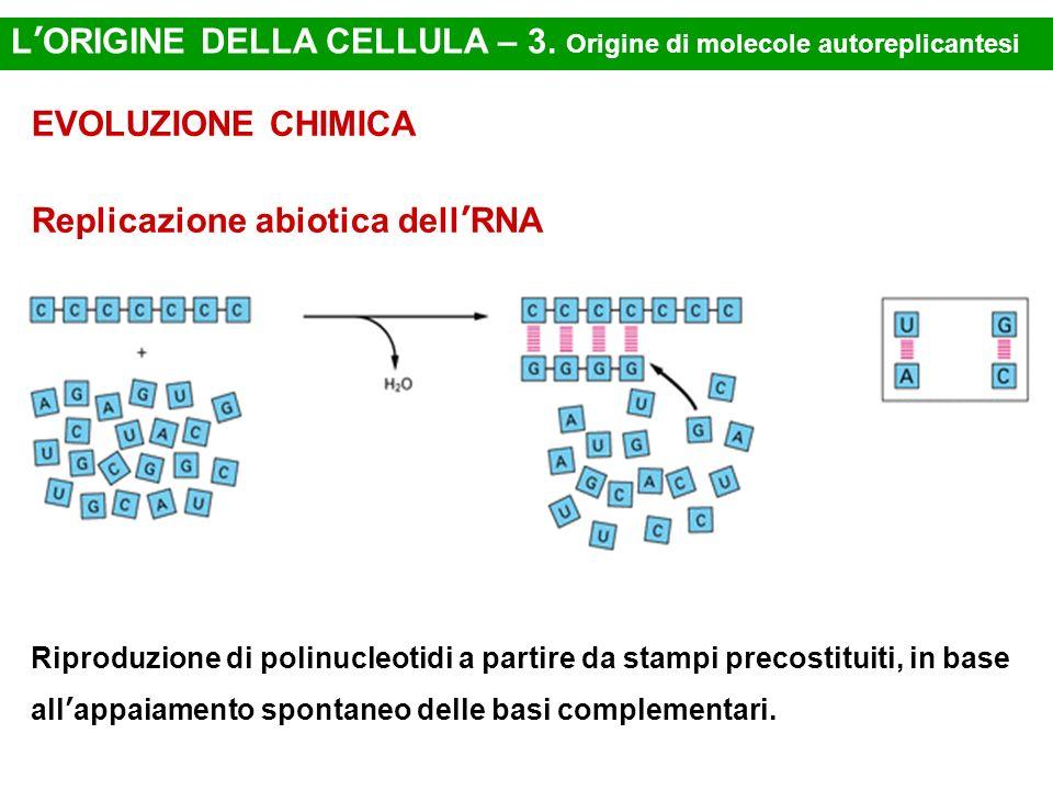 LORIGINE DELLA CELLULA – 3. Origine di molecole autoreplicantesi EVOLUZIONE CHIMICA Replicazione abiotica dellRNA Riproduzione di polinucleotidi a par