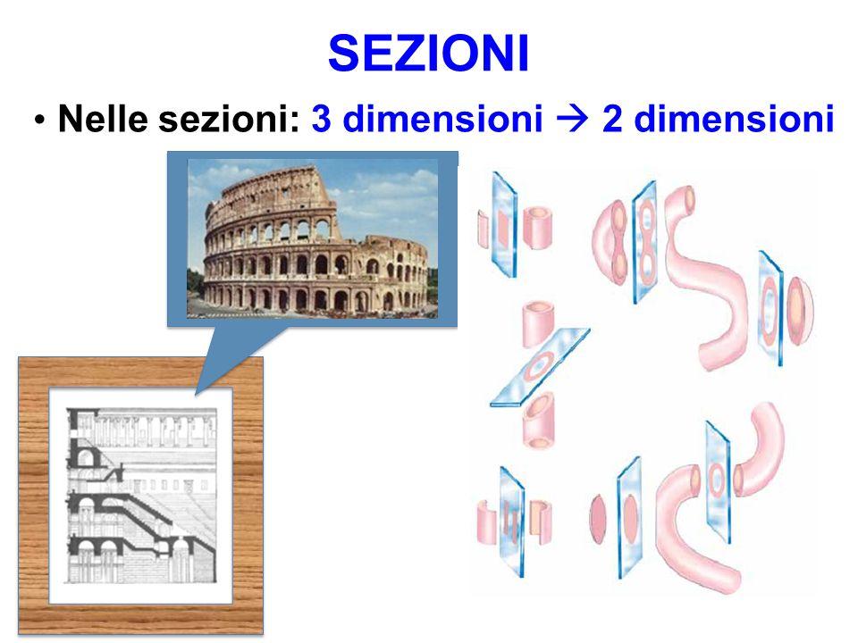 SEZIONI 3 dimensioni 2 dimensioni Nelle sezioni: 3 dimensioni 2 dimensioni