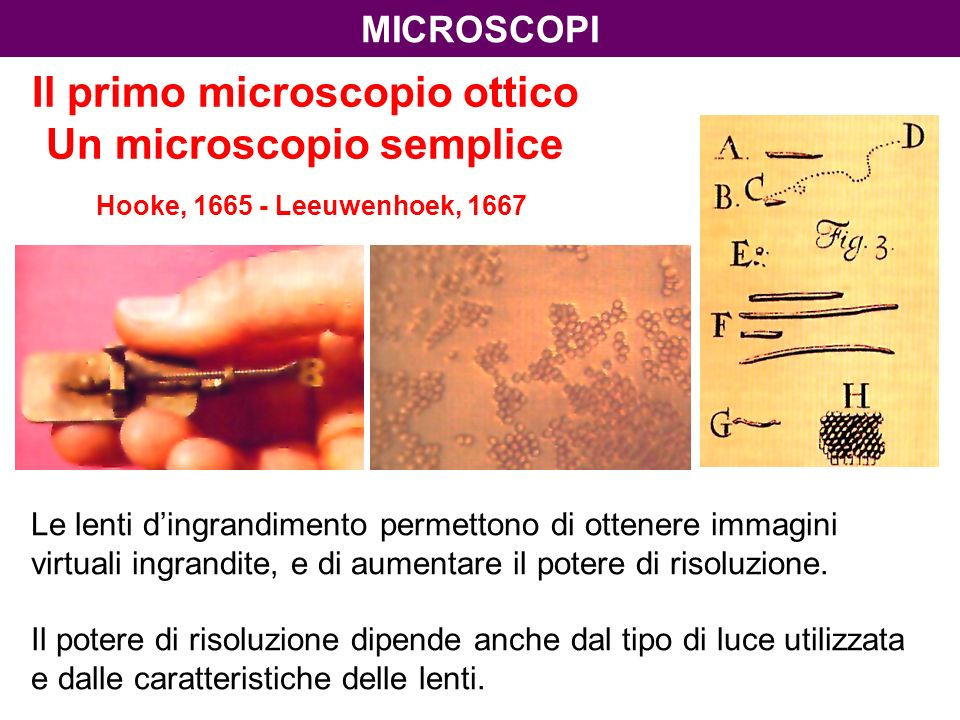 Il primo microscopio ottico Un microscopio semplice Hooke, 1665 - Leeuwenhoek, 1667 Le lenti dingrandimento permettono di ottenere immagini virtuali ingrandite, e di aumentare il potere di risoluzione.