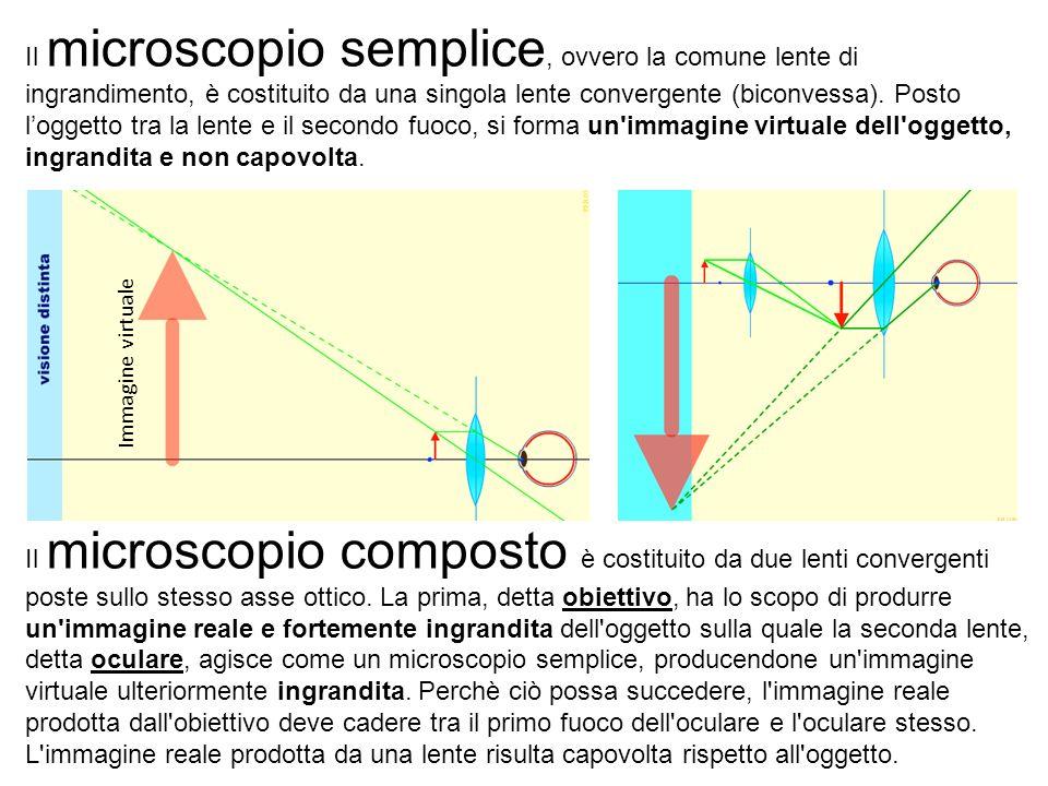 Il microscopio semplice, ovvero la comune lente di ingrandimento, è costituito da una singola lente convergente (biconvessa).