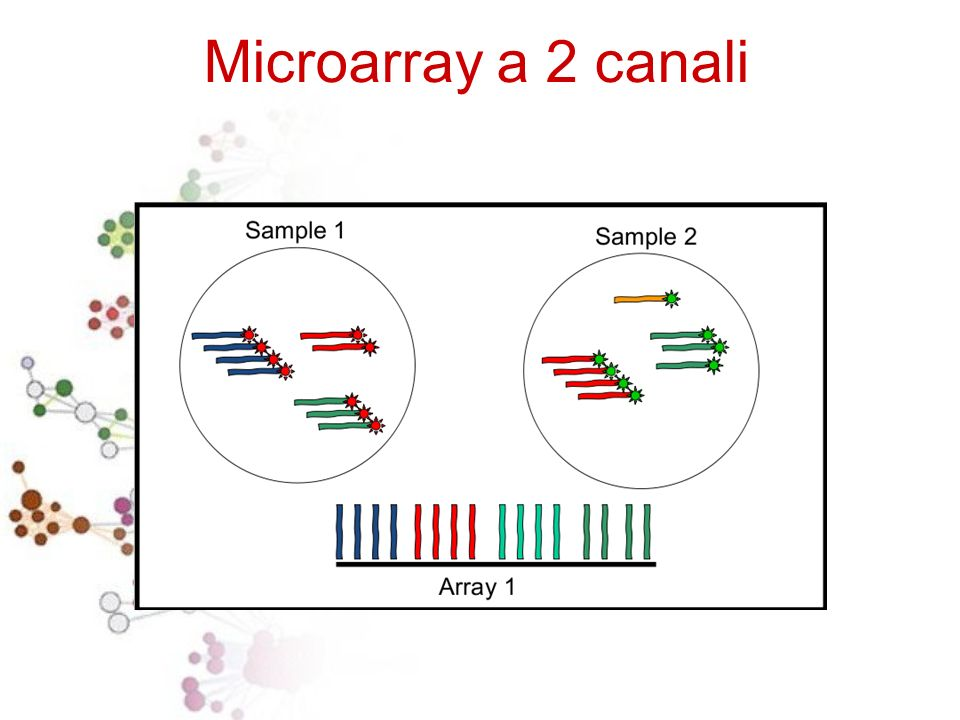 Microarray a 2 canali