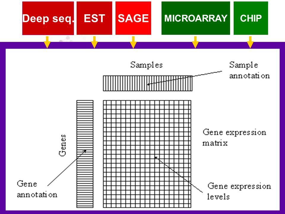 MICROARRAY SAGEEST Deep seq. CHIP