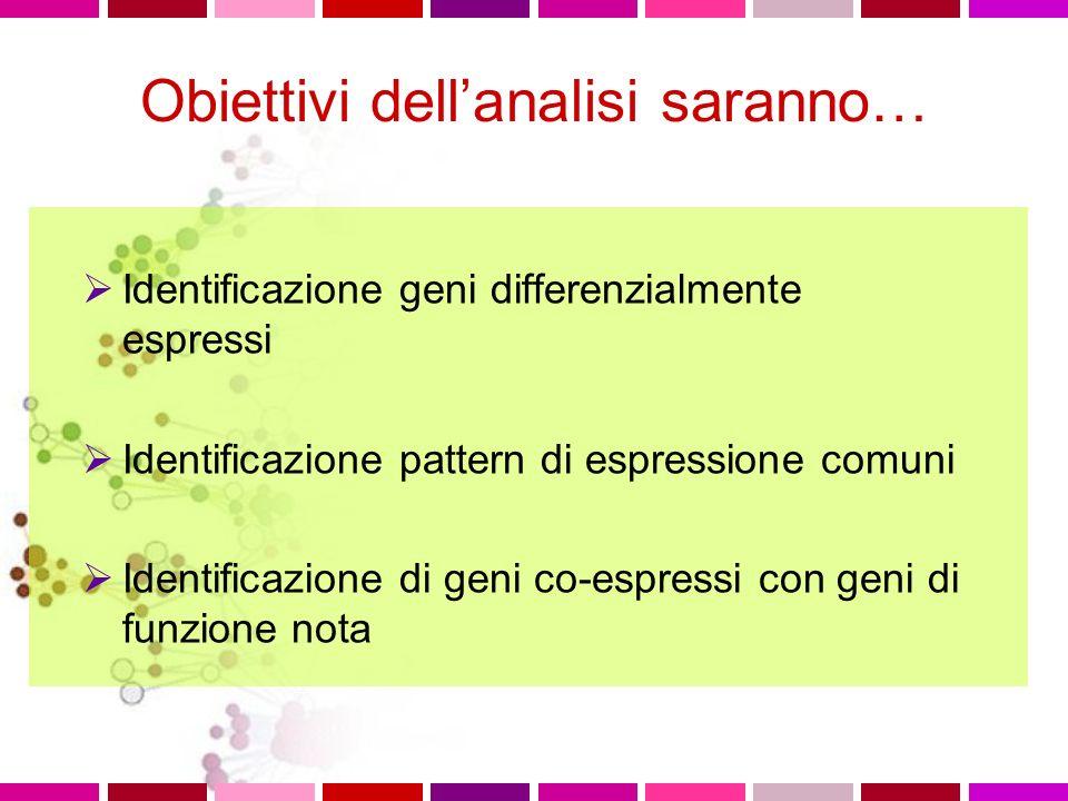 Obiettivi dellanalisi saranno… Identificazione geni differenzialmente espressi Identificazione pattern di espressione comuni Identificazione di geni c