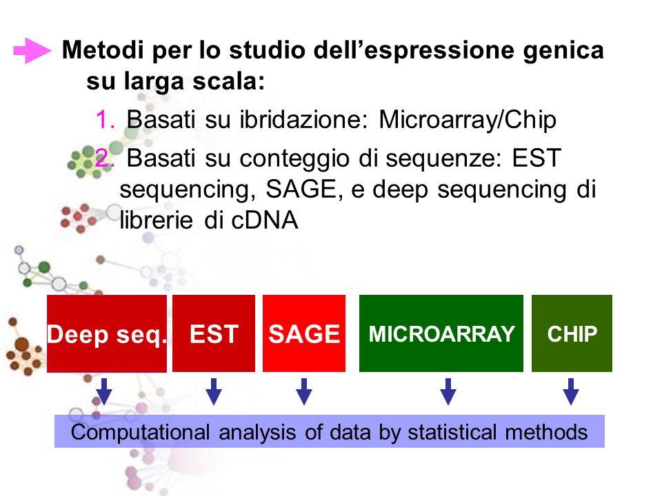 Metodi per lo studio dellespressione genica su larga scala: 1. Basati su ibridazione: Microarray/Chip 2. Basati su conteggio di sequenze: EST sequenci