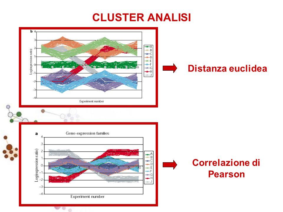 Distanza euclidea Correlazione di Pearson CLUSTER ANALISI