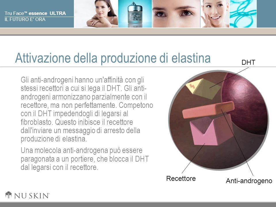 © 2001 Nu Skin International, Inc Tru Face essence ULTRA IL FUTURO E ORA Pelle giovane Quando siamo giovani, il nostro livello di DHT e di recettori corrispondenti sono bassi; quindi l elastina viene prodotta in abbondanza.