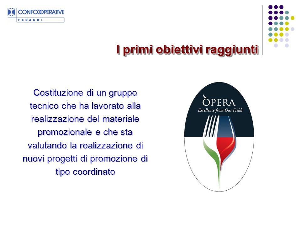 Realizzazione di un portale web (www.operaconsortium.it) e di una newsletter per mettere on line le informazioni raccolte nello scouting dei mercati oggetto delle campagne promozionali I primi obiettivi raggiunti