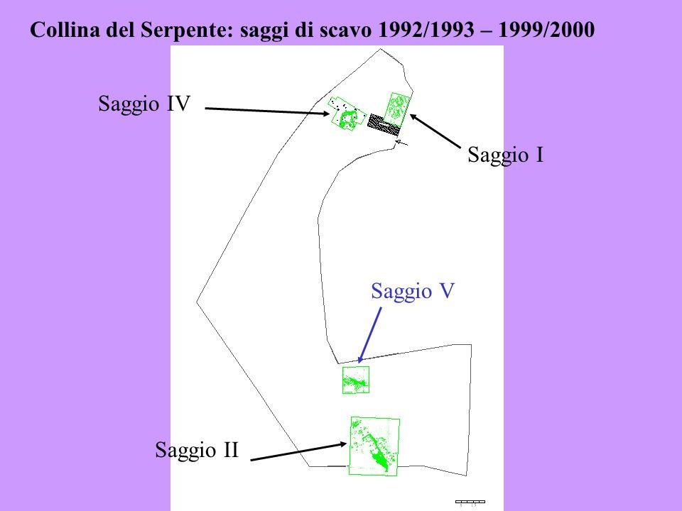 Collina del Serpente: saggi di scavo 1992/1993 – 1999/2000 Saggio I Saggio IV Saggio II Saggio V