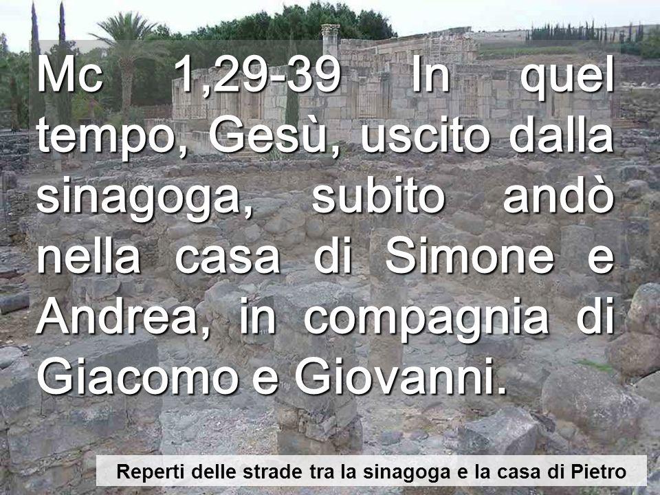 Mc 1,29-39 In quel tempo, Gesù, uscito dalla sinagoga, subito andò nella casa di Simone e Andrea, in compagnia di Giacomo e Giovanni.