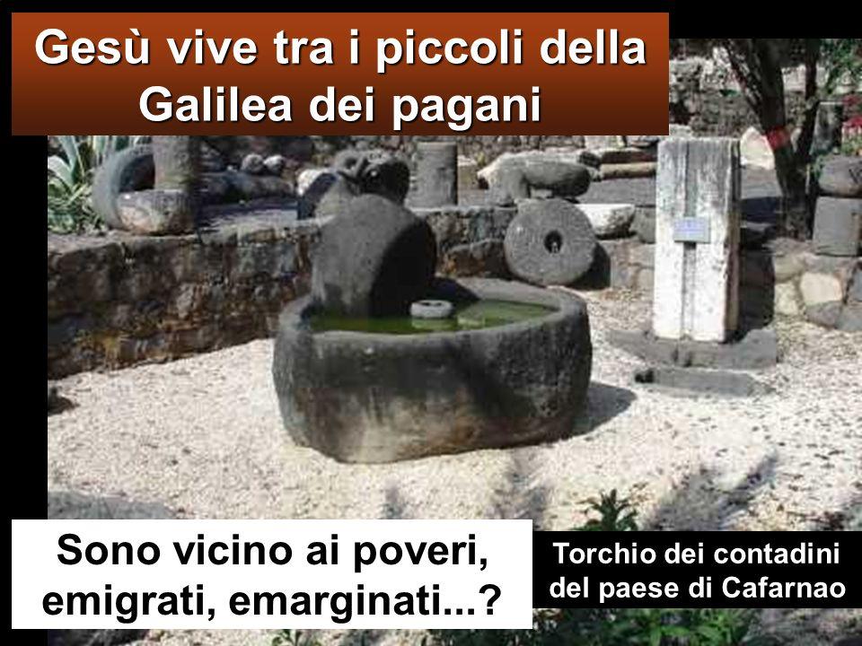 Gesù vive tra i piccoli della Galilea dei pagani Sono vicino ai poveri, emigrati, emarginati....