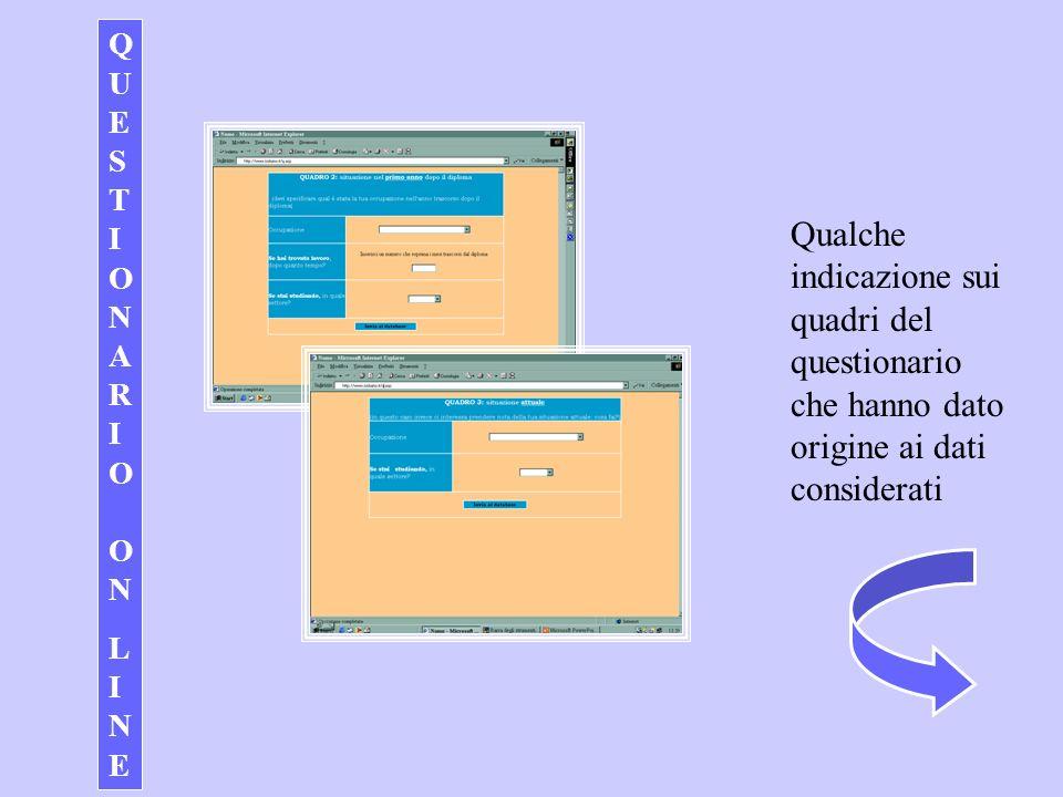 Q U E S T I O N A R I O O N L I N E Qualche indicazione sui quadri del questionario che hanno dato origine ai dati considerati