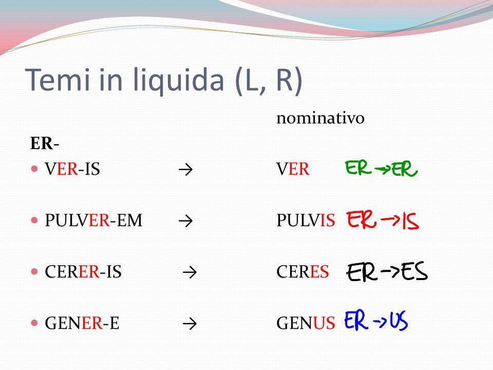Temi in liquida (L, R) nominativo ER- VER-ISVER PULVER-EMPULVIS CERER-IS CERES GENER-E GENUS