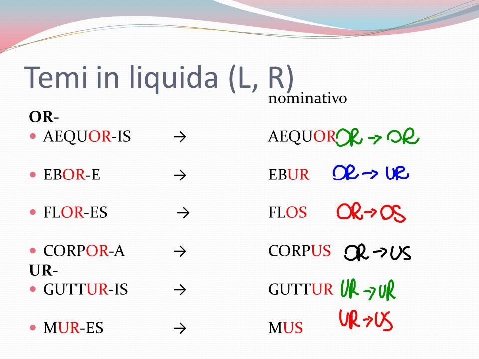 Temi in liquida (L, R) nominativo OR- AEQUOR-ISAEQUOR EBOR-EEBUR FLOR-ES FLOS CORPOR-A CORPUS UR- GUTTUR-ISGUTTUR MUR-ESMUS