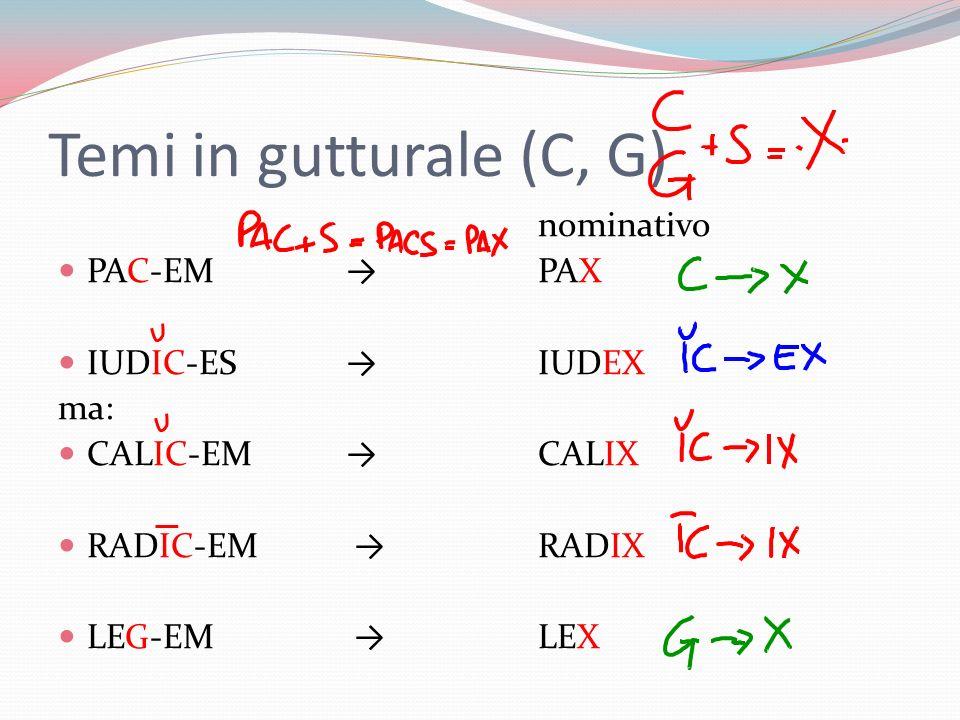Temi in gutturale (C, G) nominativo PAC-EMPAX IUDIC-ES IUDEX ma: CALIC-EM CALIX RADIC-EM RADIX LEG-EM LEX