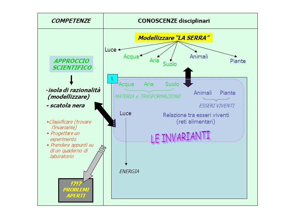 !?!? PROBLEMI APERTI I. COMPETENZECONOSCENZE disciplinari Modellizzare LA SERRA APPROCCIO SCIENTIFICO -isola di razionalità (modellizzare) - scatola n