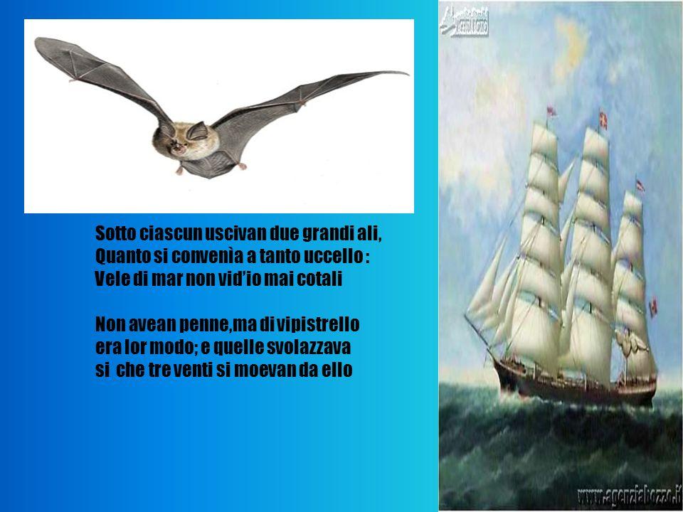 Sotto ciascun uscivan due grandi ali, Quanto si convenìa a tanto uccello : Vele di mar non vidio mai cotali Non avean penne,ma di vipistrello era lor