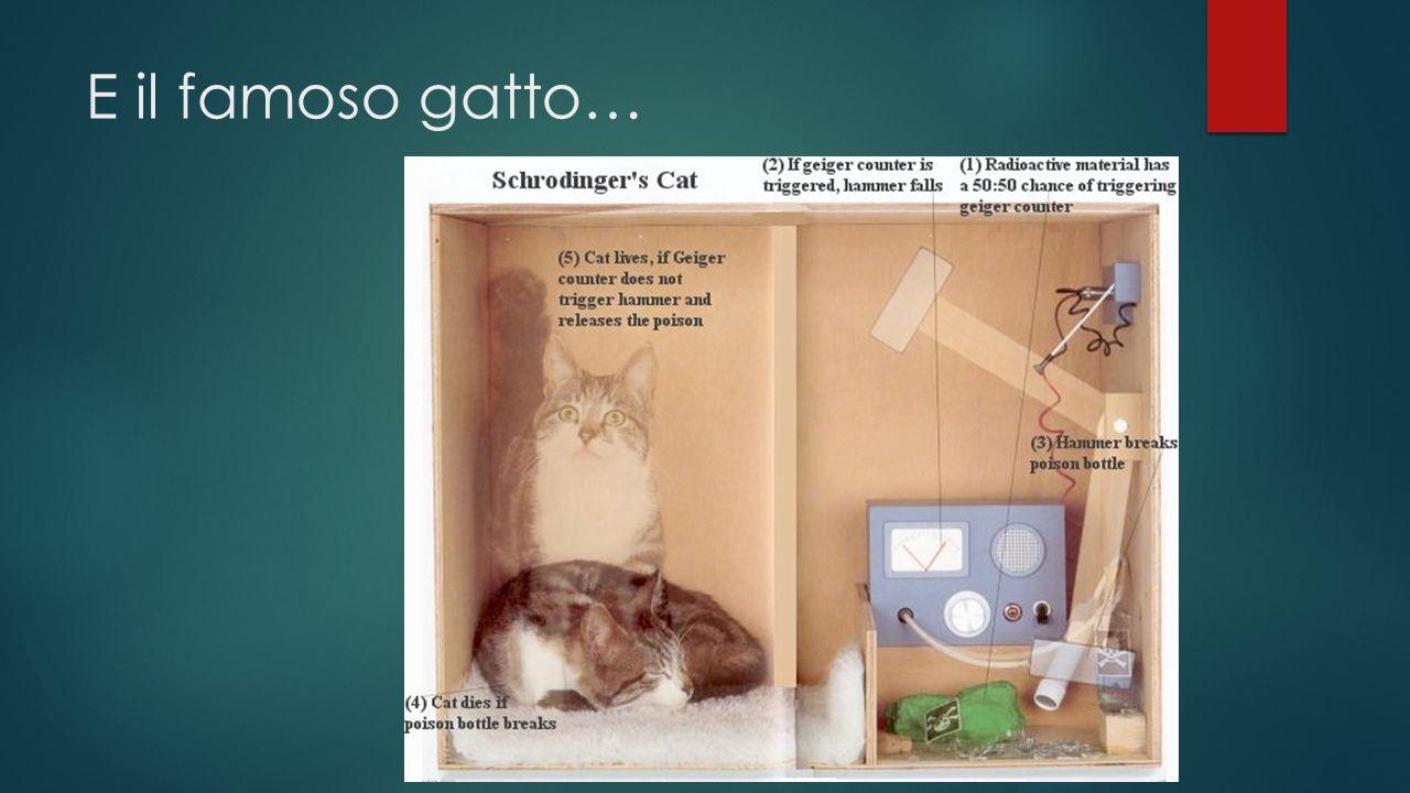 E il famoso gatto…