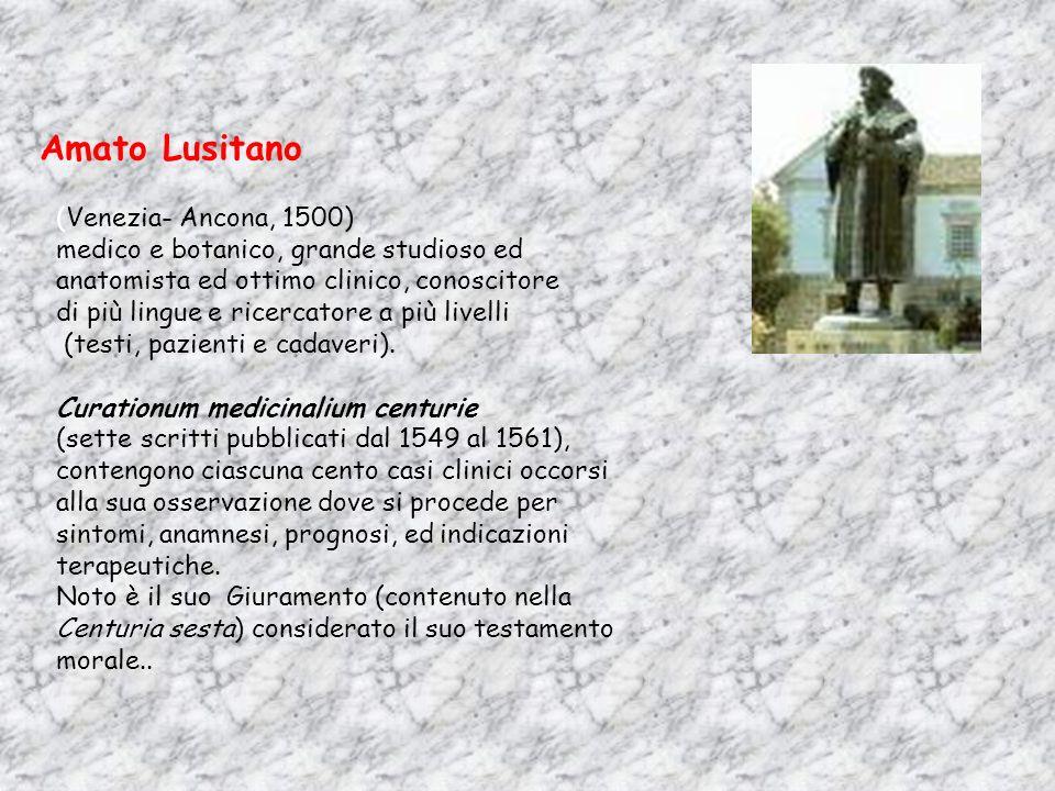 Amato Lusitano (Venezia- Ancona, 1500) medico e botanico, grande studioso ed anatomista ed ottimo clinico, conoscitore di più lingue e ricercatore a p