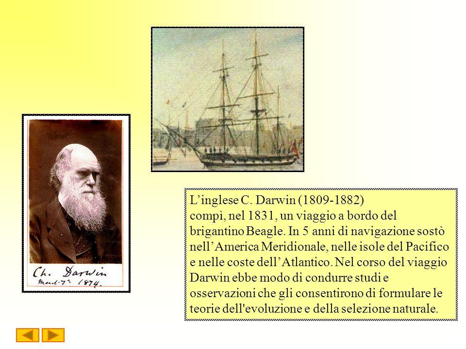 Linglese C. Darwin (1809-1882) compì, nel 1831, un viaggio a bordo del brigantino Beagle. In 5 anni di navigazione sostò nellAmerica Meridionale, nell
