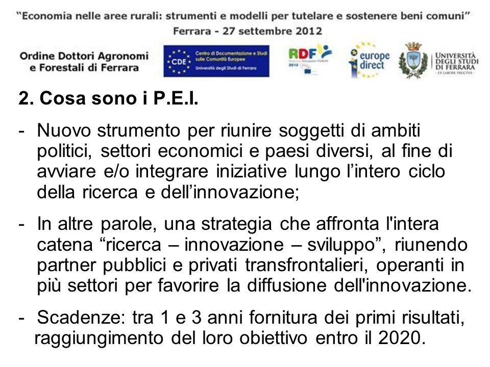 2. Cosa sono i P.E.I. -Nuovo strumento per riunire soggetti di ambiti politici, settori economici e paesi diversi, al fine di avviare e/o integrare in