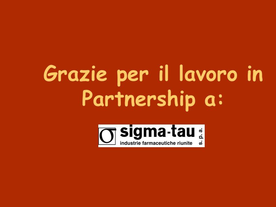 Grazie per il lavoro in Partnership a: