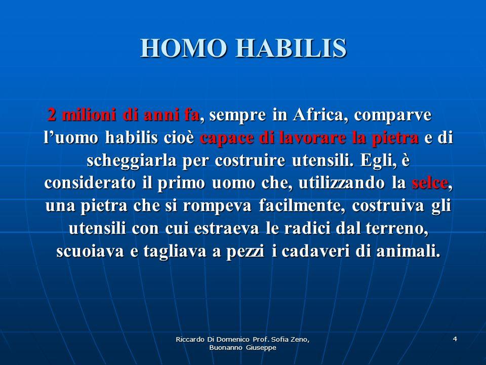 Riccardo Di Domenico Prof. Sofia Zeno, Buonanno Giuseppe 4 HOMO HABILIS 2 milioni di anni fa, sempre in Africa, comparve luomo habilis cioè capace di