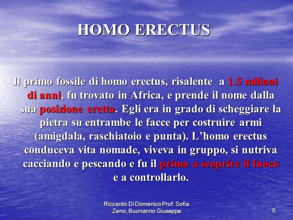 Riccardo Di Domenico Prof. Sofia Zeno, Buonanno Giuseppe5 Il primo fossile di homo erectus, risalente a 1.5 milioni di anni, fu trovato in Africa, e p