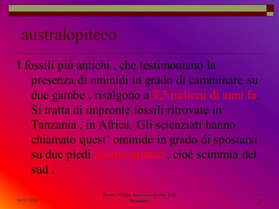 04/05/2014 Buono Giulia Francesca docenti Zeni Buonanno 3 australopiteco I fossili più antichi, che testimoniano la presenza di ominidi in grado di ca