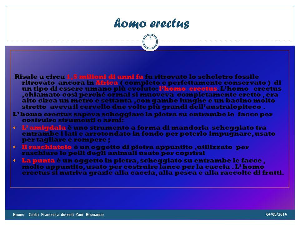 04/05/2014 Buono Giulia Francesca docenti Zeni Buonanno 6 Homo sapiens Circa 125000 anni fa,in Africa e in Europa, comparve lhomo sapiens, un nostro antenato più evoluto dei precedenti, con un cranio ancora più sviluppato.