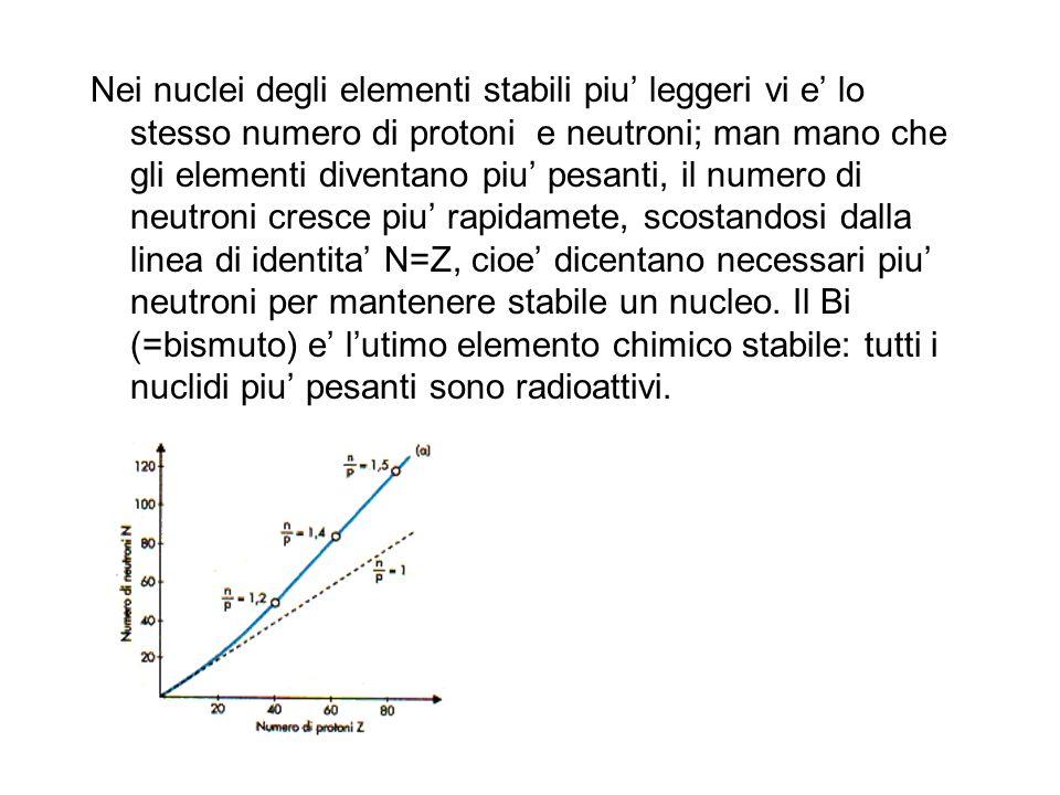 Nei nuclei degli elementi stabili piu leggeri vi e lo stesso numero di protoni e neutroni; man mano che gli elementi diventano piu pesanti, il numero