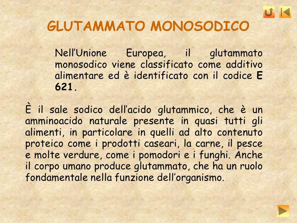 GLUTAMMATO MONOSODICO NellUnione Europea, il glutammato monosodico viene classificato come additivo alimentare ed è identificato con il codice E 621.