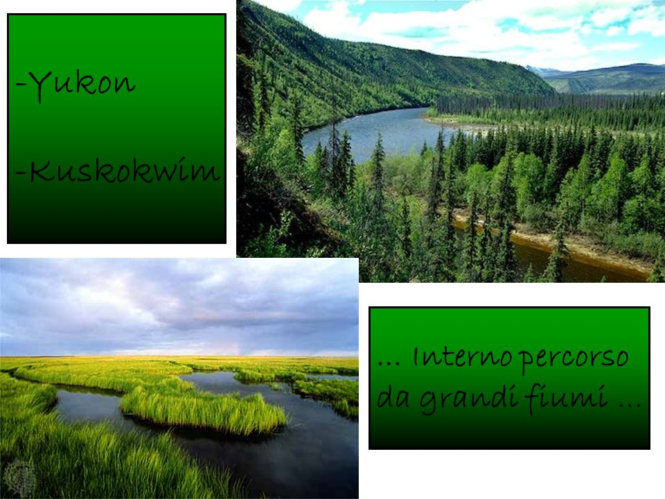 -Yukon -Kuskokwim … Interno percorso da grandi fiumi …