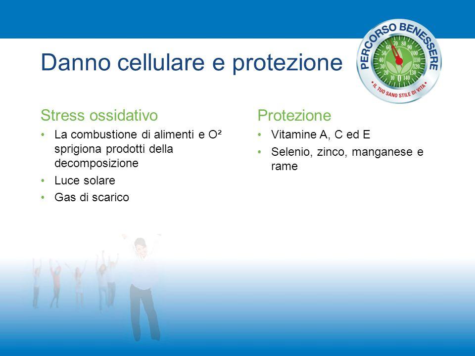 Danno cellulare e protezione Stress ossidativo La combustione di alimenti e O² sprigiona prodotti della decomposizione Luce solare Gas di scarico Prot